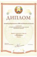 Диплом_Лучший предприниматель 2008